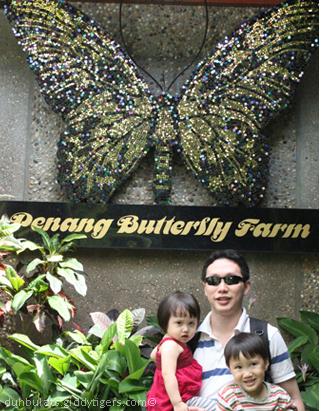 butterflyfarm1